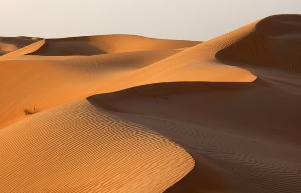 Print_Abu-Dhabi-desert