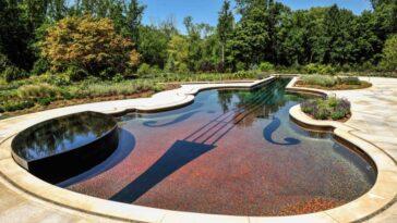 Violin Inground Pool